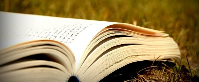 open-book-grass-nature-field-wide-hd-wallpaper